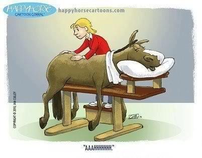 A cartoon of a horse getting massaged