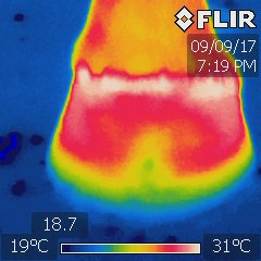 A thermography image of a hoof