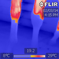 A thermography image of the blood flow in a horses legs